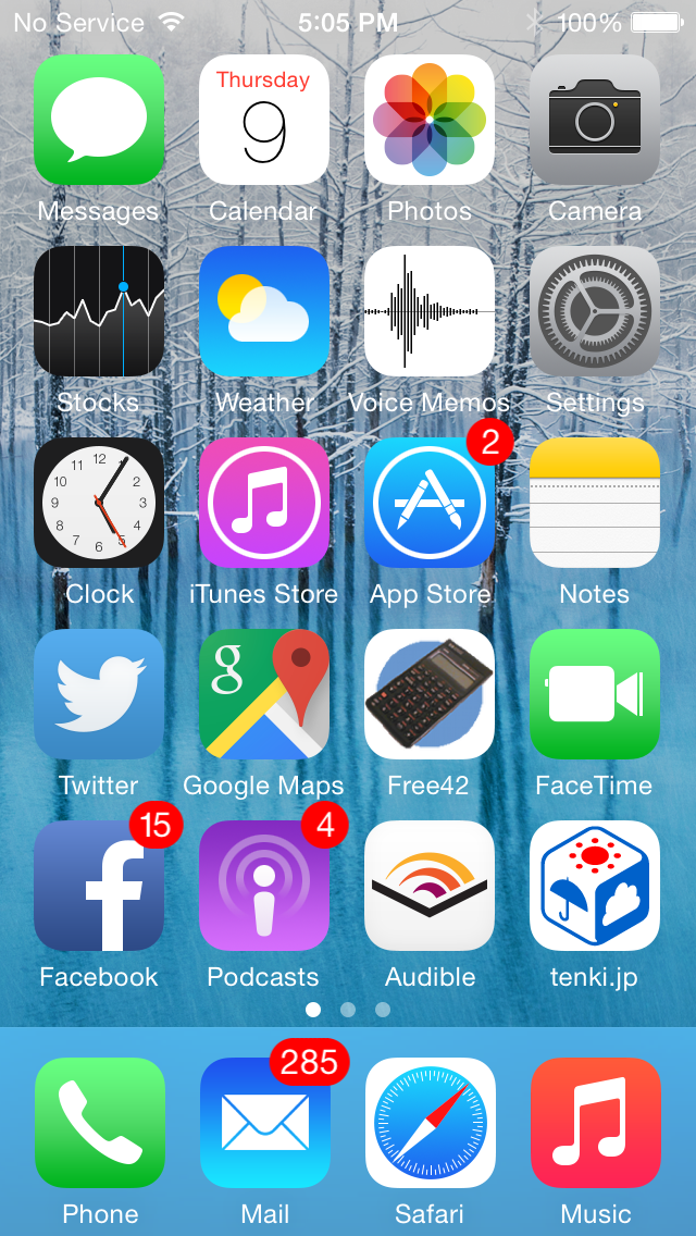 iPhone 5c Display