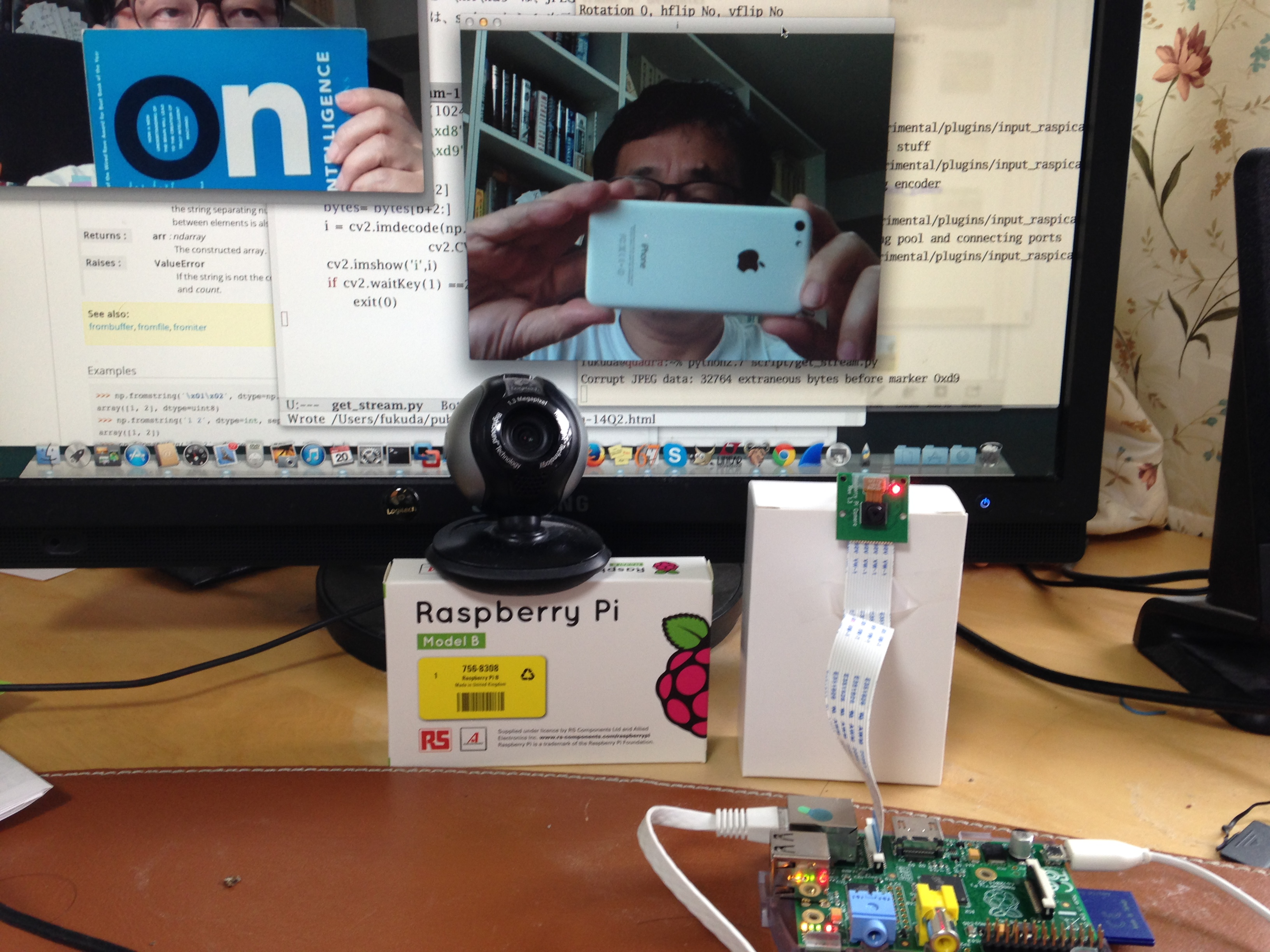 Logitech WebCam and Raspi Camera